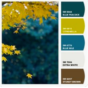 create a color palette for your room