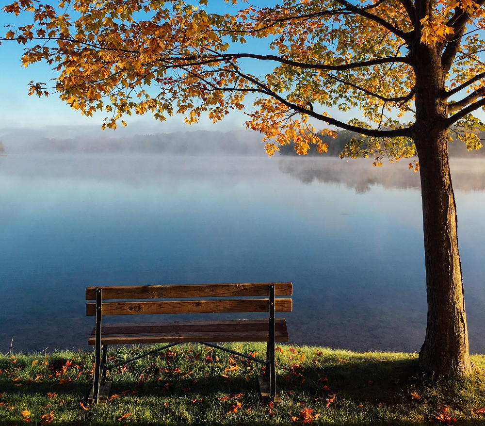 a bench next to a lake in fall
