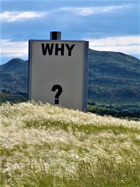 Questions…Questions…Questions