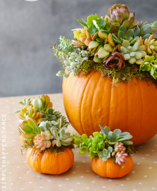 5 ways to dress up your home for fall