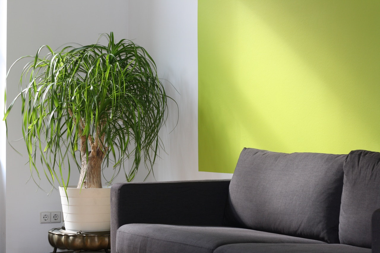 How to choose an accent wall | Interior Design | Portland OR | Julie ...