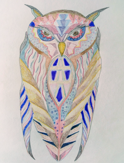 Owl%201_edited