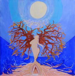 Moonlit Grace