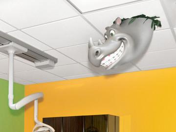Rhino Ceiling Character