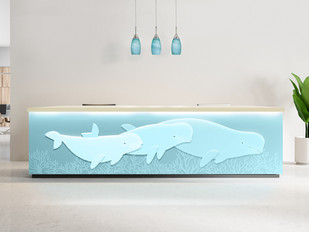 Beluga Whale Front Desk