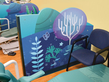 Coral Room Dividers