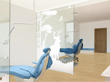 Glass Panelled Open Bay Treatment Area