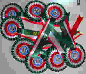 Rosettes made in the colour of the Italian flaf