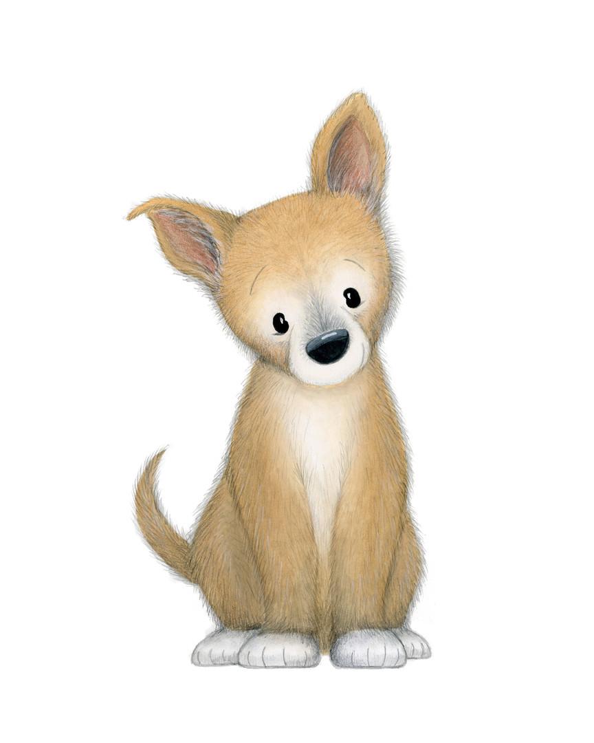Dingo 2.jpg