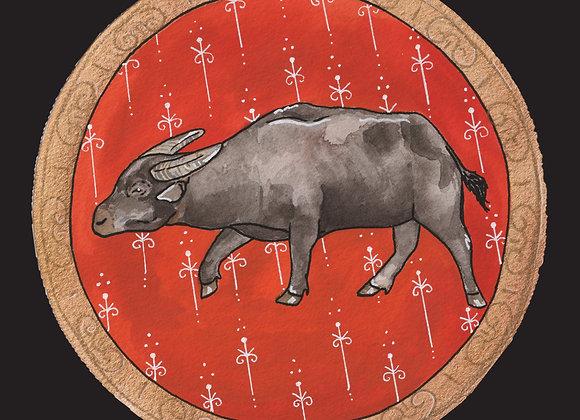 The Endangered Zodiac