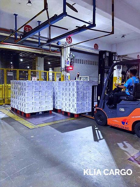 Jumapanilo Air Freight
