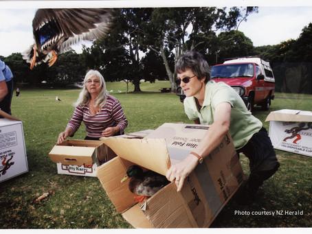 Photographic conduct around wild birds in rehabilitation