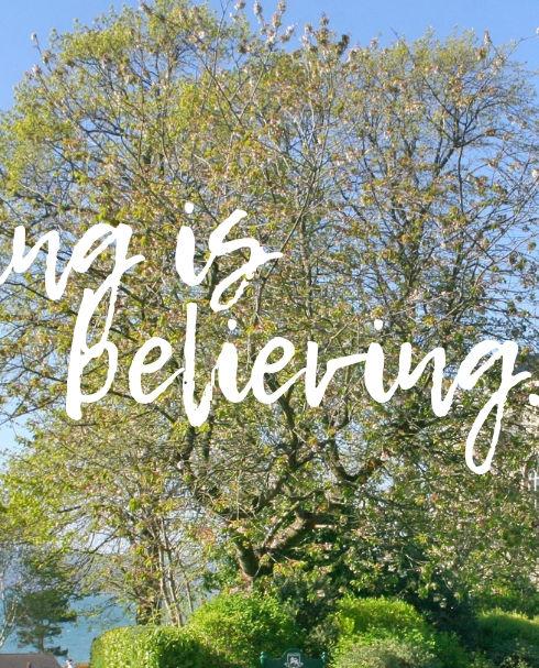 Seeing is believing.jpg