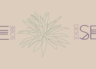 Arte que sobre e desce a Serra - Abertura dia 10 de Novembro