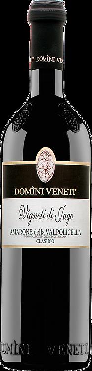 Vigneti Jago Amarone della Valpolicella Classico - Domini Veneti