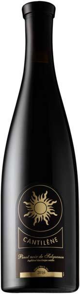 Pinot Noir Salquenen AOC