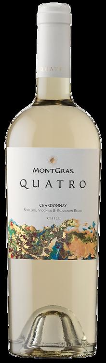 Quatro White Blend of Colchagua Valley - Viñas MontGras