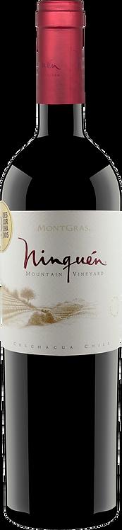 Ninquen Mountain Vineyard of Colchagua Valley - Viñas MontGras