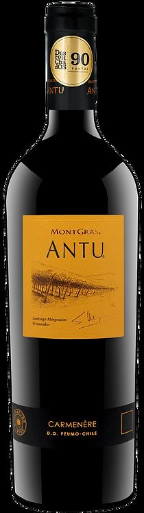Antu Carmenère Mountain Vineyard of Colchagua Valley - Viñas MontGras