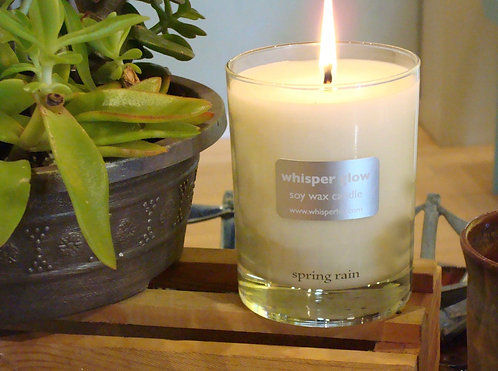 Soy Candles - 12/12 oz jars