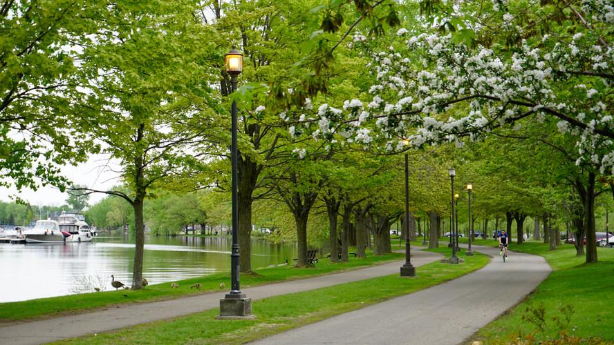 Parc René-Lévesque P7.jpg