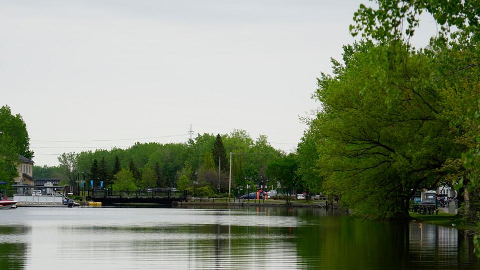 Forêt_et_Canal_P2.jpg