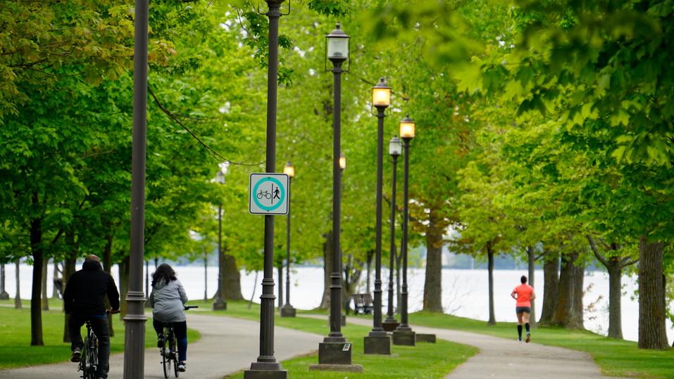 Parc René-Lévesque P5.jpg