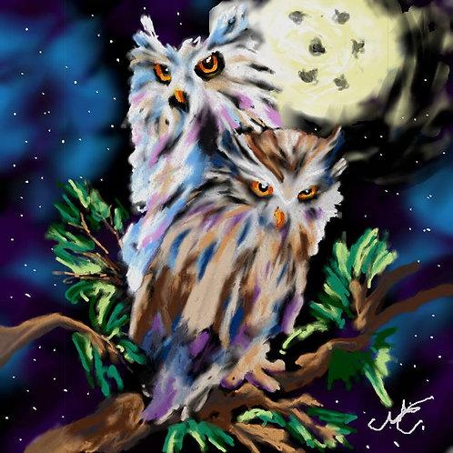 Owls  Print 8 x 10