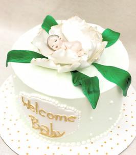 Welcome Baby Shower Cake_edited.jpg