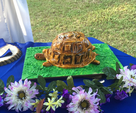 Turtle grooms cake
