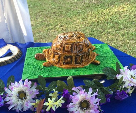 Turtle grooms cake