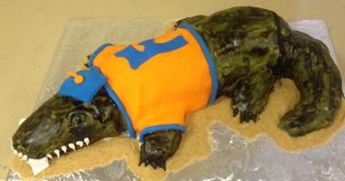 Florida State Gators alligator grooms ca
