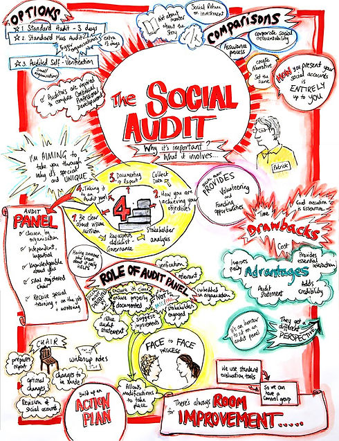 socialauditdiagram.jpg