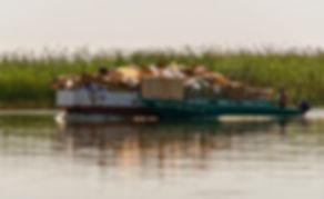 эко трафик в камышах дельты фролов 3 мес