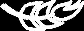 AGM_logo(white).png