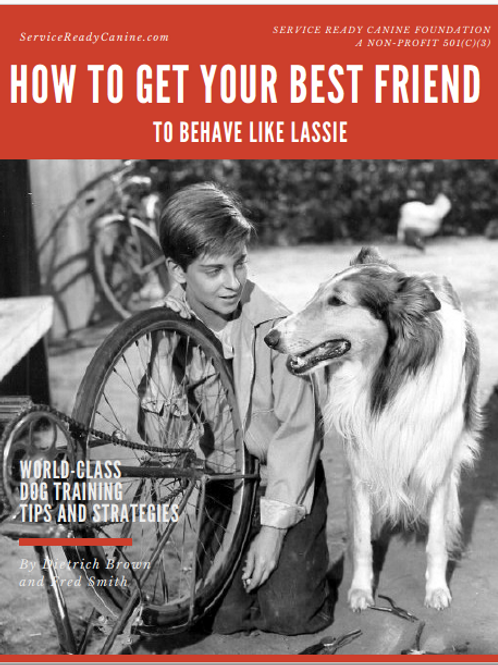 How to Get Your Best Friend to Behave Like Lassie