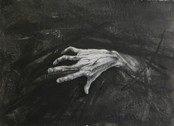 le tue mani come radici