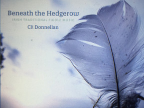 Supporting Traditional Arts - Irish Traditional Music debut album