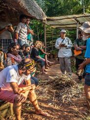 Forestry Mentorship