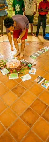 Ecovillage Design Education Cards