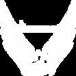 initiative.dkf logo_white.png