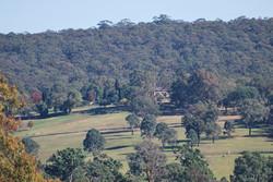 Fernhill landscape