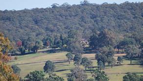 Walk Fernhill Estate