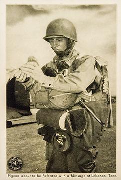 WWII Military Maneuvers Te