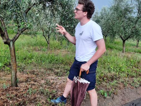 L'olio in Piemonte: anche a Pinerolo.