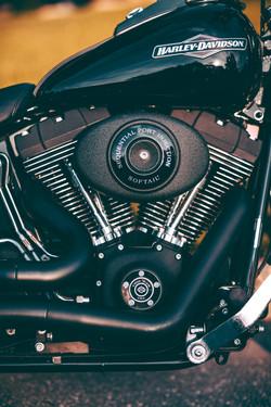 Harley-Davidson Night Train - Cleona, PA