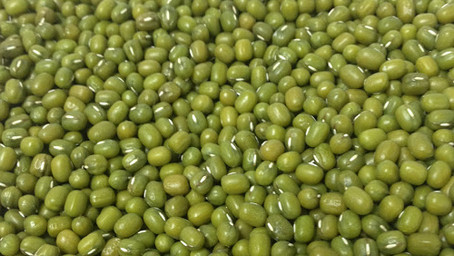 Making sense of Mung bean varieties
