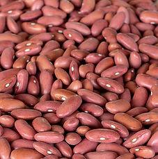 Kidney Beans - Light