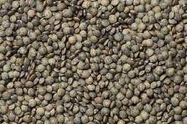 French Puy Lentils