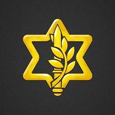 """לוגו צה""""ל החדש"""